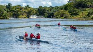 Conheca a Floresta Nacional de Tapajos em Santarem 1